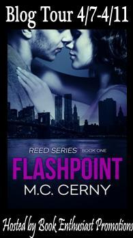 Flashpoint blog tour button