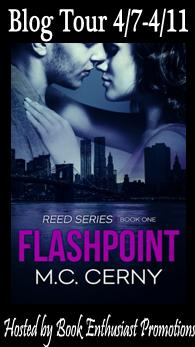 Flashpoint blog tour button