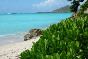 Antigua Beach | Book FHR