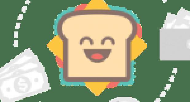 Human Resource Management Gary Dessler 14th edition