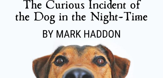 Book Review: The Curious Incident of the Dog in the Night-Time by Mark Haddon