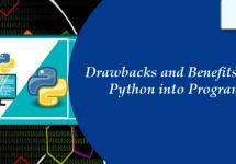 python-assignment-writing