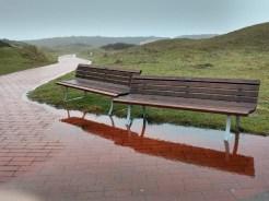 Langeoog - Bänke nach dem Regen in den Dünen