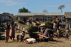 agri-food madagascar