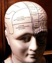 dummy brain