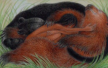 Midday Nap by Nicola Bayley