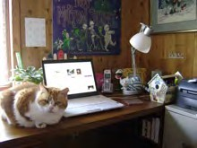Mutzi and Lisa Bullard's desk