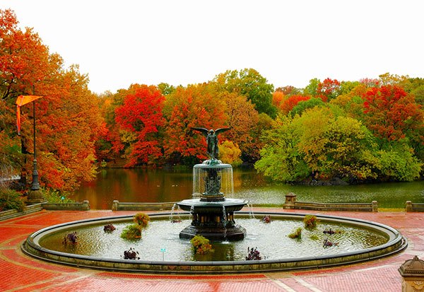 Autumn in New York, Central Park, New York Ciity