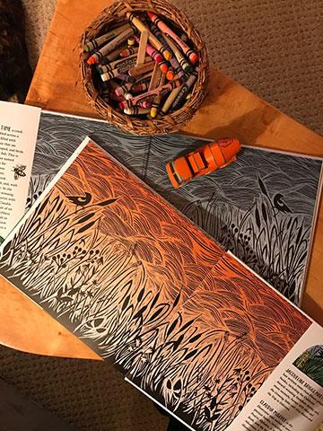 Claudia McGehee using crayons