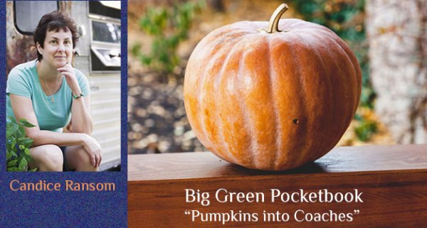 Pumpkins into Coaches