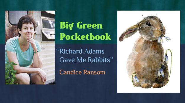 Big Green Pocketbook
