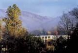 Ridgecrest Mist