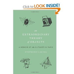 An Extraordinary Theory of Objects book