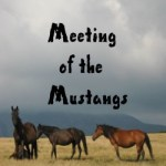 MEETING  OF  THE  MUSTANGS a story of Wild Mustangs