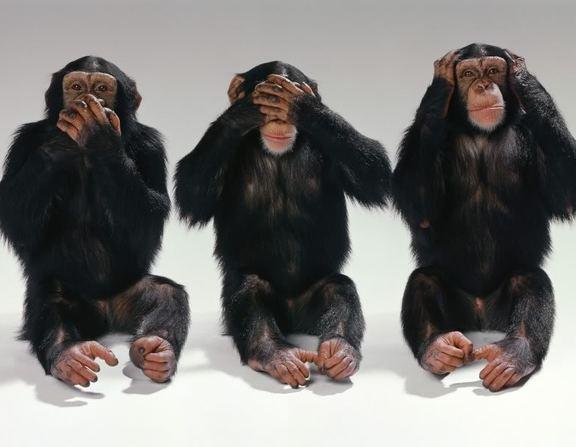 Large_majmuni