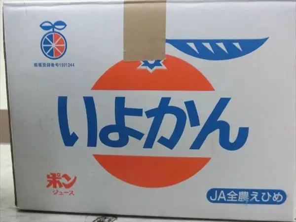 高知倉庫からお土産が届きました!!