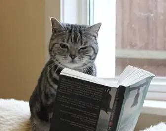 色んな本を読もう!最近買取した本のご紹介♪