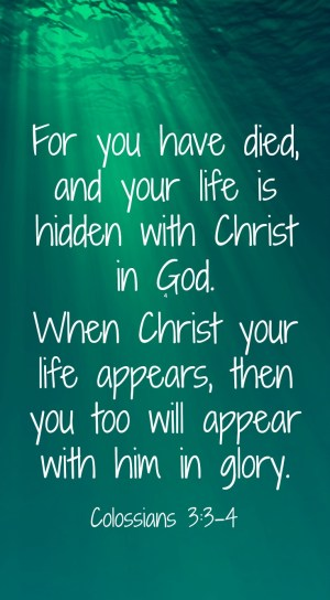For you have died, and your life is hidden with Christ in God. When Christ your life appears, then you too will appear with him in glory.