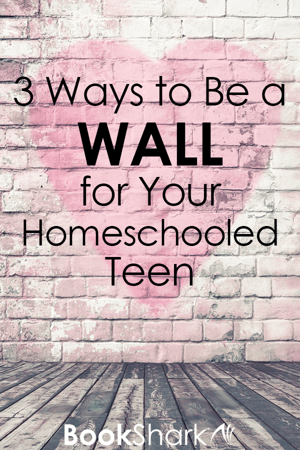 3 Ways to be a Wall for Your Homeschooled Teen