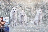 Dreaming of a White Wolf Christmas wolves and book cover 900 1 300x200 Dreaming of a White Wolf Christmas by Terry Spear