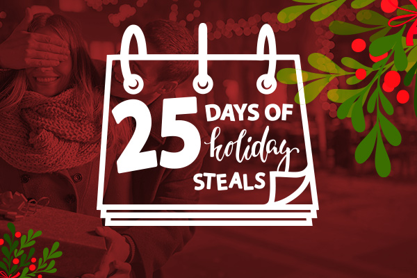 Day 5 of Entangled Publishing's Holiday Steals