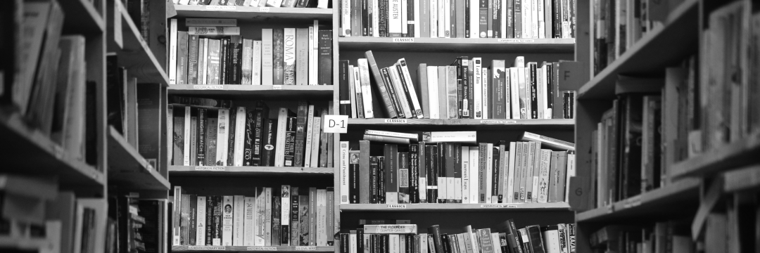 photo of bookshelves