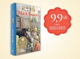 black_beauty_evz