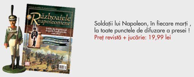 soldatii-lui-napoleon