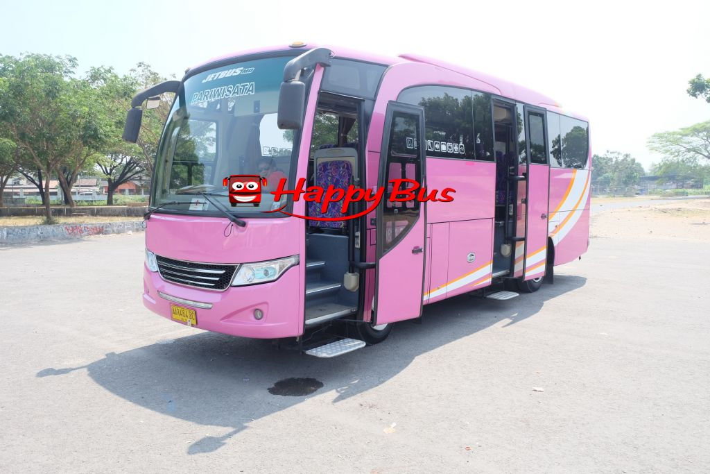 PO Happy Bus - Medium Bus Eksekutif