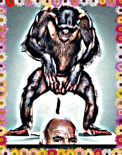 Jill Greenberg's monkey pooping on McCain