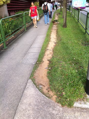 Singapore's clean sidewalks