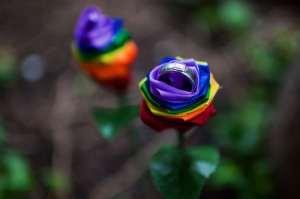 Gay-flower