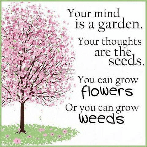 Grow flowers or grow weeds