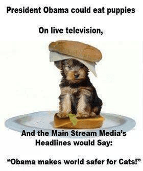 Media bias and Obama eating puppies