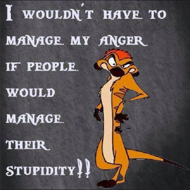 Anger and stupidity management