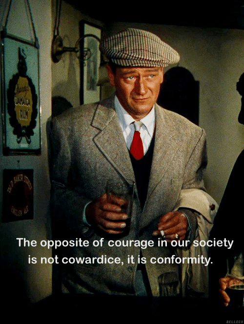 Opposite of courage is conformity