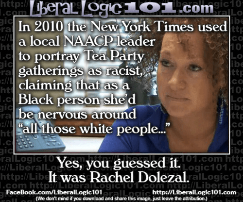 Dolezal led attack against Tea Party on racism grounds