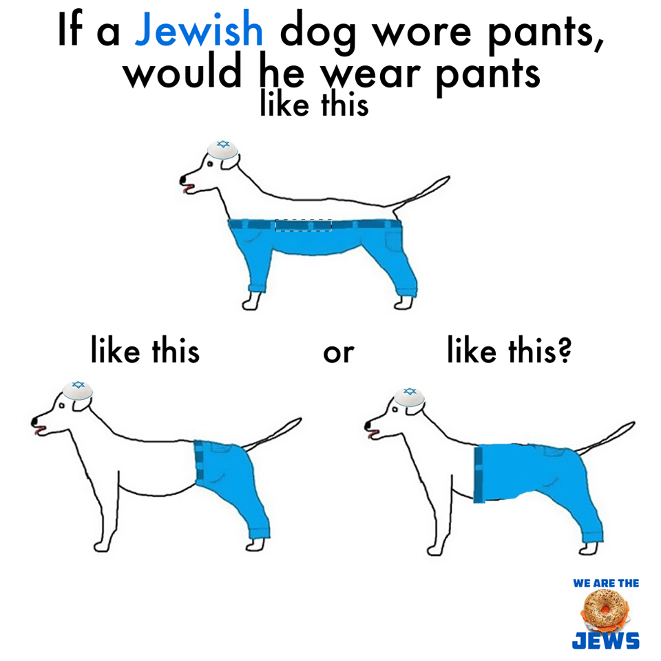 How a Jewish dog would wear pants