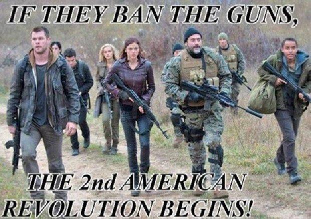 If guns banned second revolution