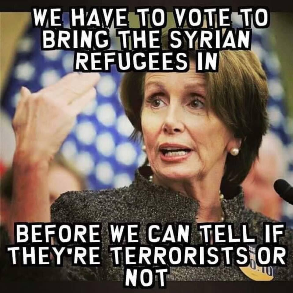 Stupid liberals Syrian refugees Pelosi joke