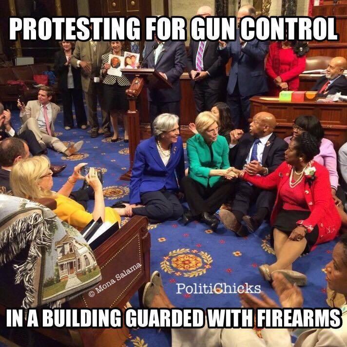 Gun control Leftist hypocrisy