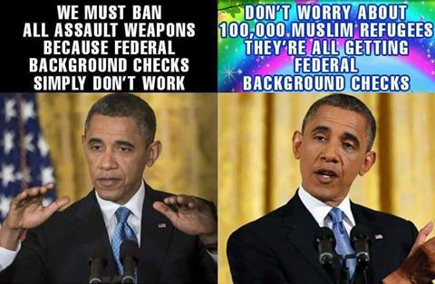 Obama federal background checks
