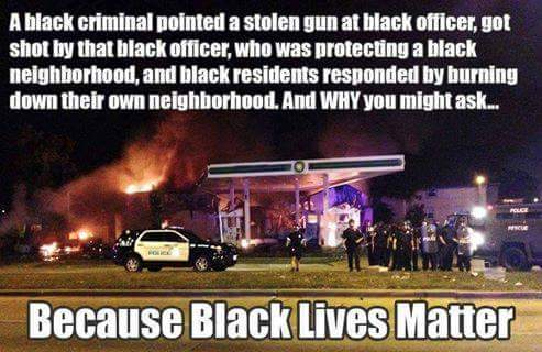 Blacks insanity of BLM protests