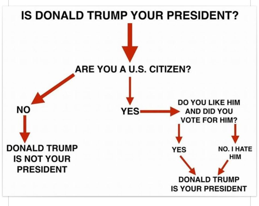 trump-my-president-flow-chart