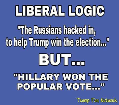 stupid-leftists-hacking-but-hillary-won