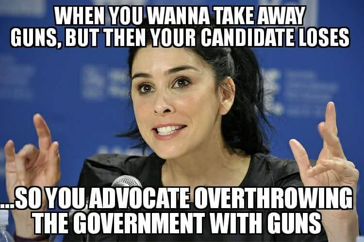 stupid-leftists-like-guns-for-themselves