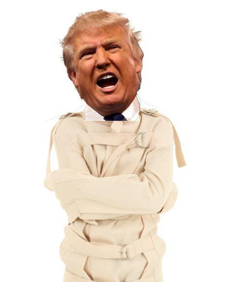 Trump 25th Amendment