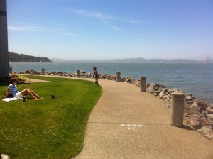 Climate Change post Marin County Tiburon shoreline