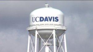 UC Davis Diversity