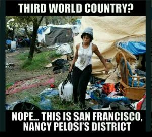 Democrat Party machine homeless